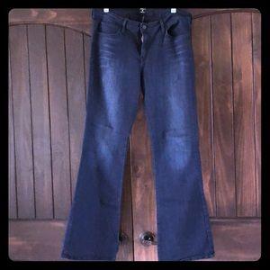 NWOT Dark Denim Jeans—Boot Cut